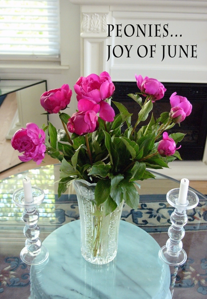 Peonies - Joy of June